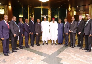 President Buhari Seeks Ecobank's Collaboration on Government's Intervention in Agriculture